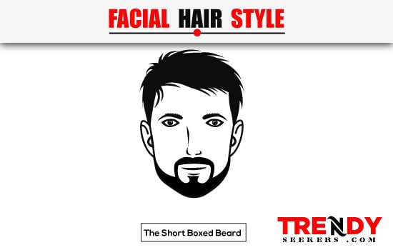 The Short Boxed Beard Beard Style