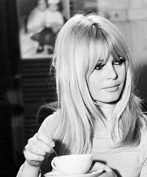 The Bardot - Long Layered Hairstyles