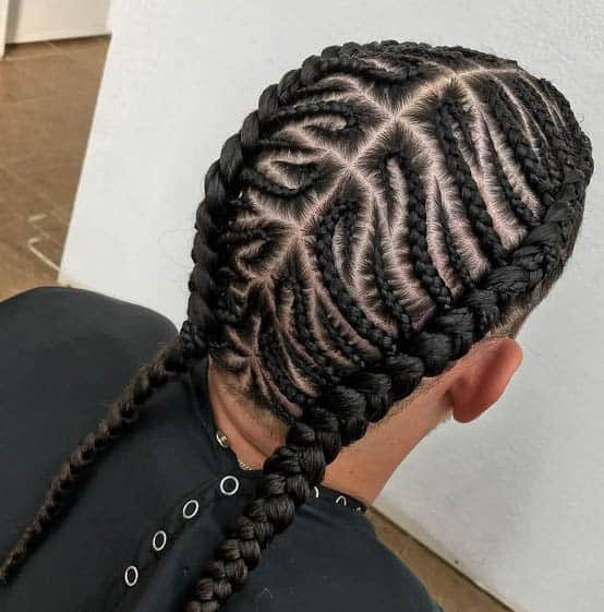 Two Braids and Cornrows for Men Hairstyles