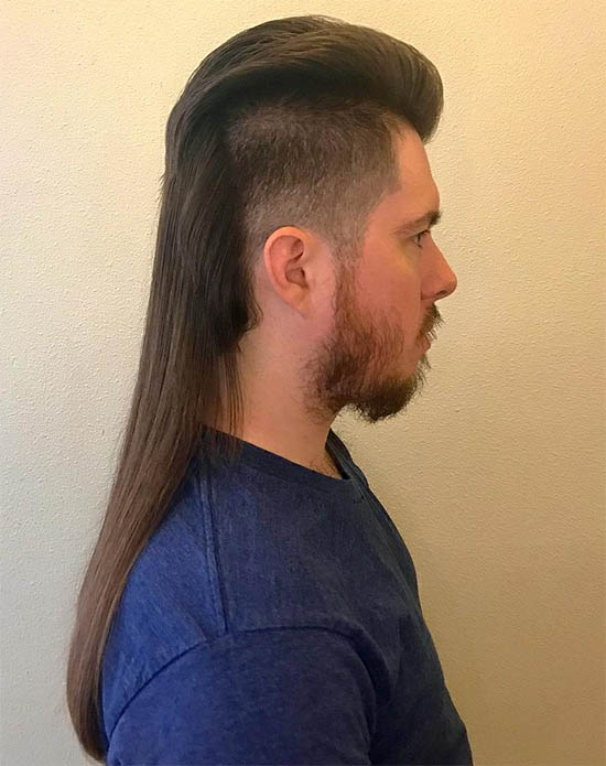 The Long Mullet